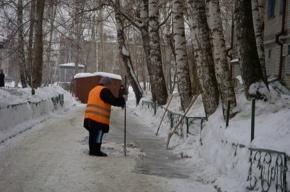 В Петербурге объявлен дополнительный набор дворников