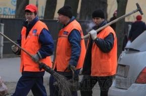 Петербург заменит гастарбайтеров провинциалами