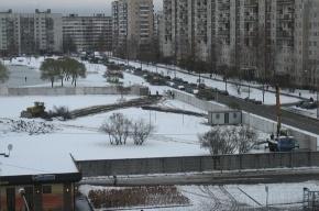 В Петербурге прошел пикет против строительства Дворца спортивных танцев