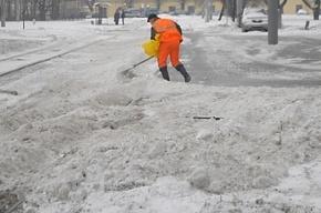 Обнародован график уборки улиц Петербурга от снега на 10-11 января