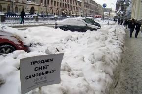 В Петербурге продают снег (фото)