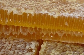 Ребенка убили в наказание за съеденный мед