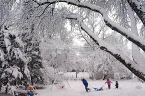 Петербуржцам обещают три ясных дня, а затем новый затяжной снегопад