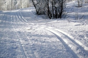 «Лыжню России» обслужит спецавтобус № 400