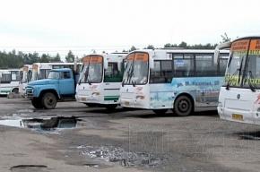 На Малой Балканской маршрутка сбила женщину