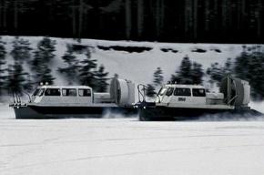 На Финском заливе оторвало льдину с рыбаками