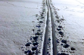 Вице-губернатор Михаил Осеевский встал на лыжи
