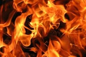 Вчера вечером горело общежитие Медуниверситета