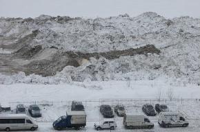 Полигон талого снега беспокоит жителей Морской набережной