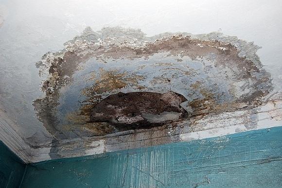 В доме на Литейном 150 лет ждут ремонта: Фото