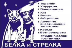 Ветеринарная клиника «Белка и Стрелка» – все услуги под одной крышей