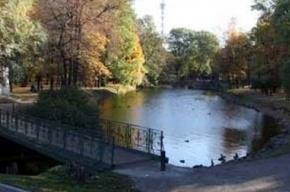 Активисты проведут акцию в защиту Лопухинского сада от застройки