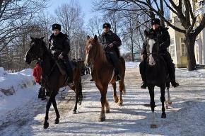 По Стрельне ездят милиционеры на конях