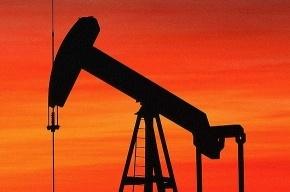 Растет цена на нефть