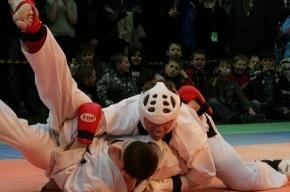 В Петербурге соберутся представители единоборств из 40 стран