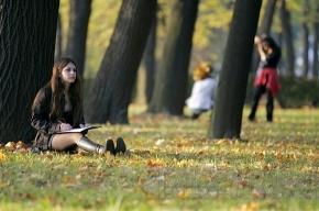 Петербургские студенты соберутся на туристический слет