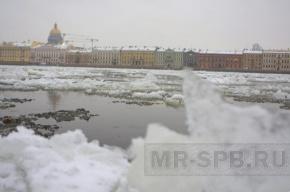 В Петербурге и области вылавливали утопленников