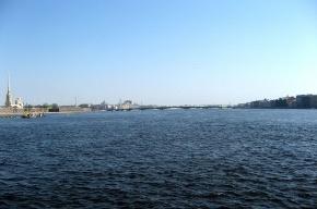 В Петербурге штормит: дует сильный ветер, в Неве поднимается вода