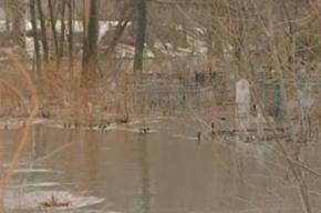 Во Фрунзенском районе кладбище оказалось под водой
