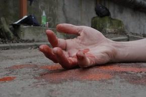 На Богатырском проспекте погиб гастарбайтер