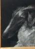 По бархату рисуя пухом тополей: Фоторепортаж