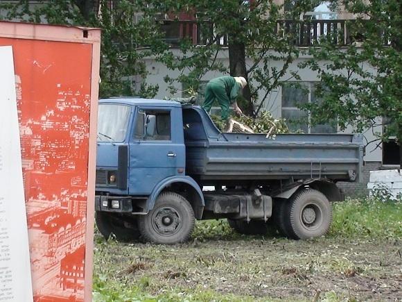 Жительница Фарфоровской улицы: «Это президент Медведев приказал под нашими окнами деревья рубить?»: Фото