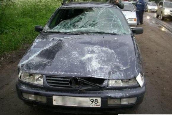 В ДТП на Красносельском шоссе пострадали несколько машин: Фото