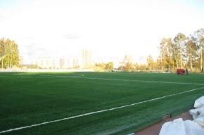Стадион с лучшим футбольным покрытием открывается в Петербурге в Калининском районе