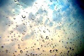 На выходных возможны дожди
