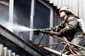 На Светлановском проспекте горела квартира, из огня спасли 4-летнюю девочку