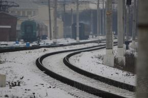 Высокоскоростной поезд «Петербург-Хельсинки» будут испытывать под Москвой