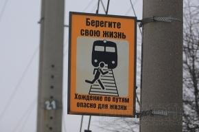 Сегодня на Финляндском вокзале - День пассажира