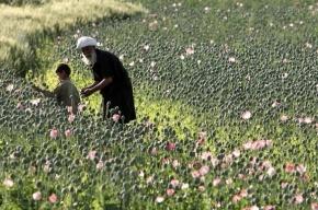 Сергей Иванов: Афганские наркотики угрожают миру и безопасности