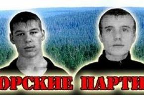 О «Партизанах Приморья» спросили у Медведева