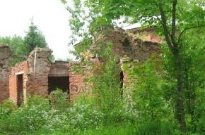 Памятники Царского Села: дожить до юбилея