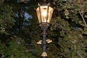 Петербургские улицы будут освещать фонари из XIX века