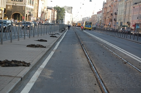 Жара расплавила прокладку под трамвайными рельсами (ФОТО): Фото