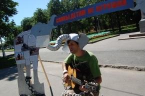 Люди с хоботами выступили против цирков