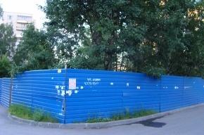 Газон с березами на Серебристом бульваре окружили забором