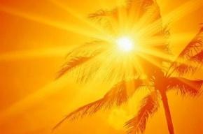 Завтра в Петербурге опять будет жарко