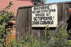 «Пикник Дымовского»: одного из участников подозревают в поломке забора