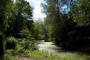 Парк «Екатерингоф» будут реставрировать