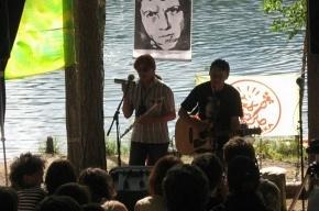 В Сосново может пройти рок-фестиваль в защиту «Лампушки»