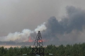 Жители Воронежа: «Больше всего от огня пострадал левый берег»