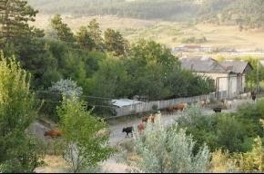 Народная этнография: Батуми - Ереван