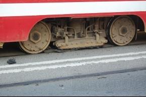 Жара расплавила прокладку под трамвайными рельсами (ФОТО)
