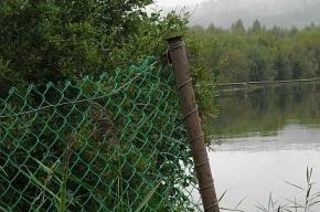 Ирина Андрианова: «Прокуратура выиграла первый в Ленобласти суд против приватизации берега»