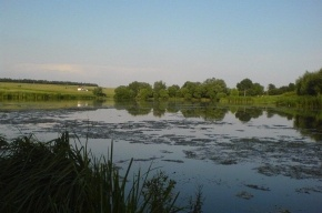 В Выборгском районе утонули двое