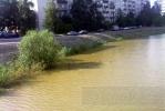 Кировский район: На речку с мёртвыми утками выехала ветеринарная инспекция: Фоторепортаж