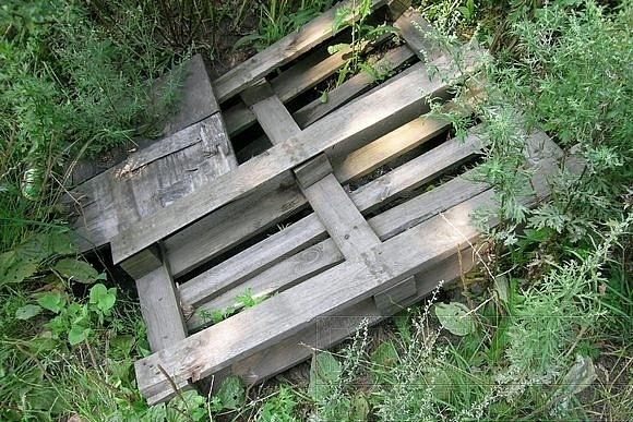 Полсотни открытых люков за одну прогулку: Фото